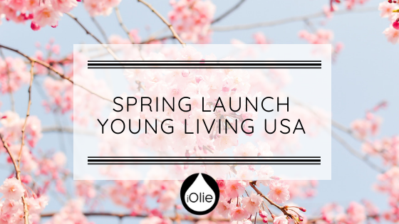 Spring Launch Amerika